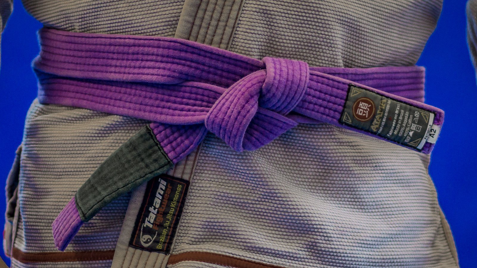BJJ Purple Belt Requirements - Viva MMA BJJ & Kickboxing